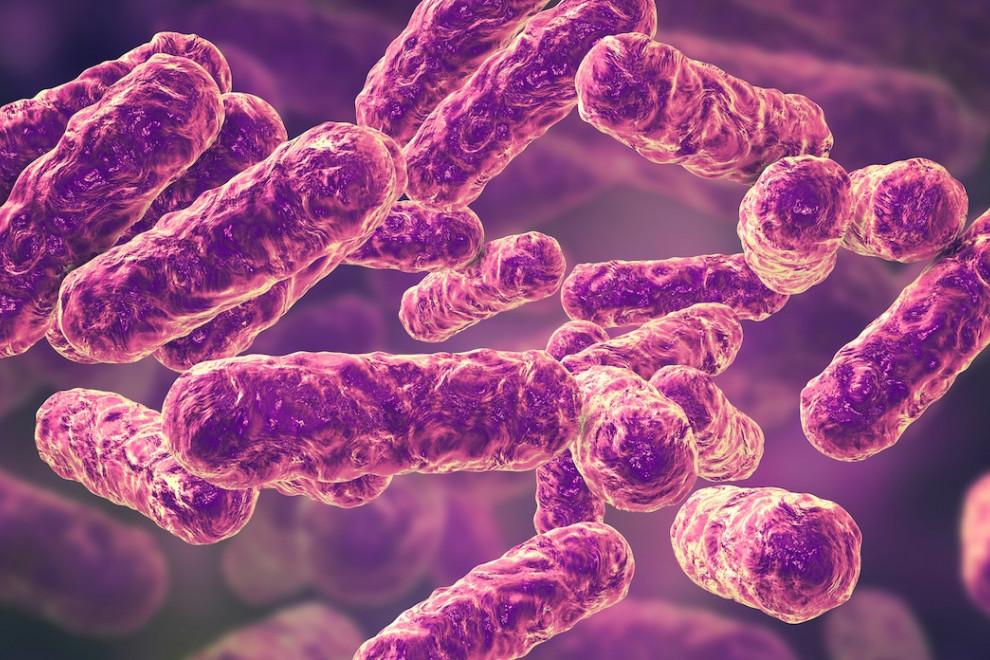 Microorganismos suicidio