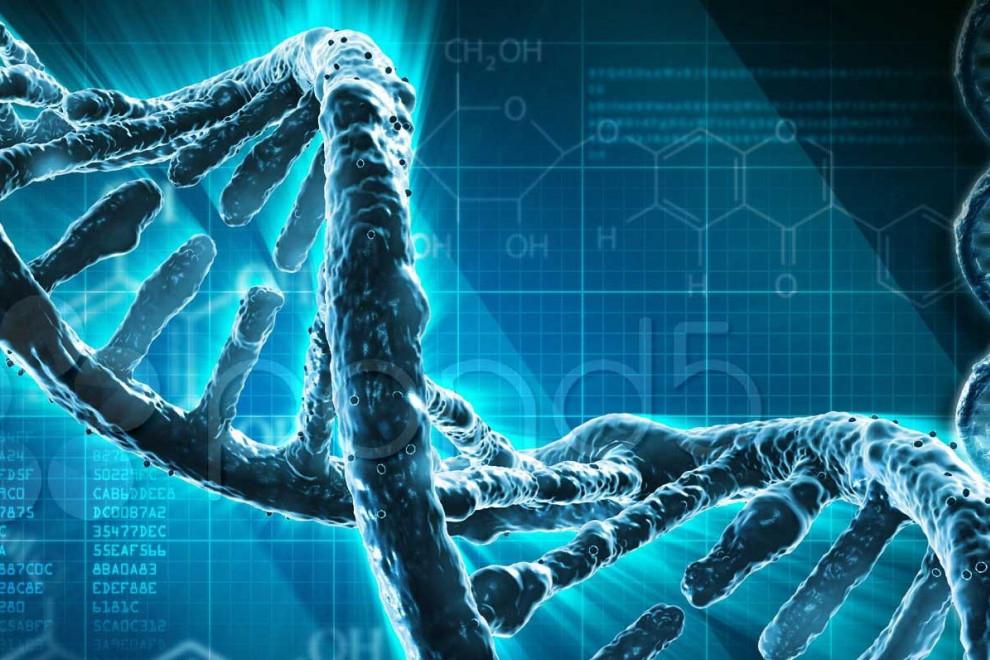 Tipos mutaciones