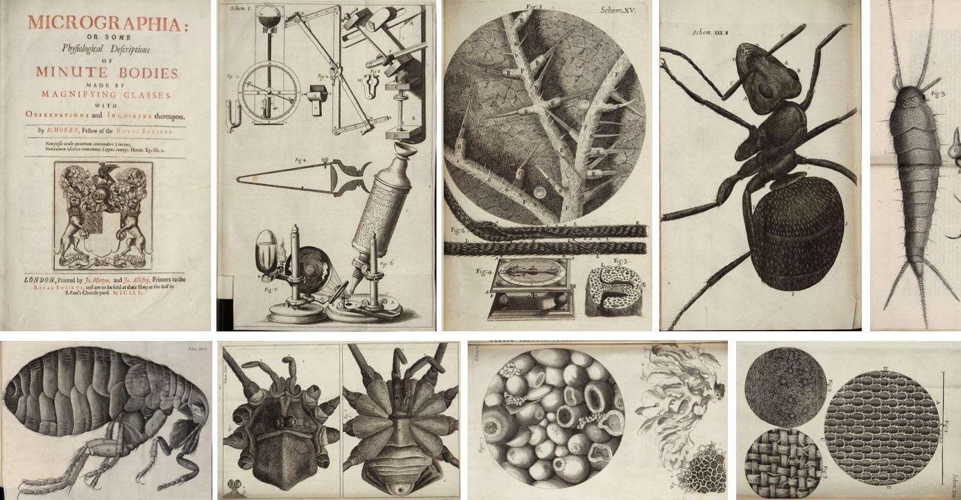 Micrographia