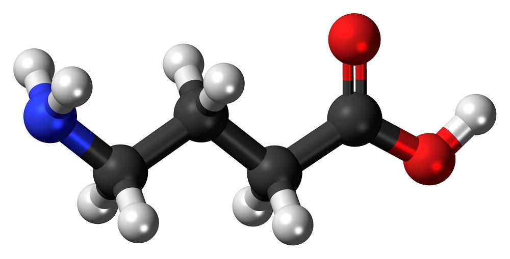 GABA neurotransmisor