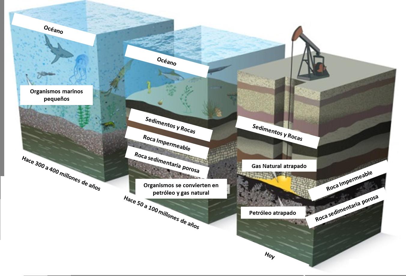 Formación petróleo