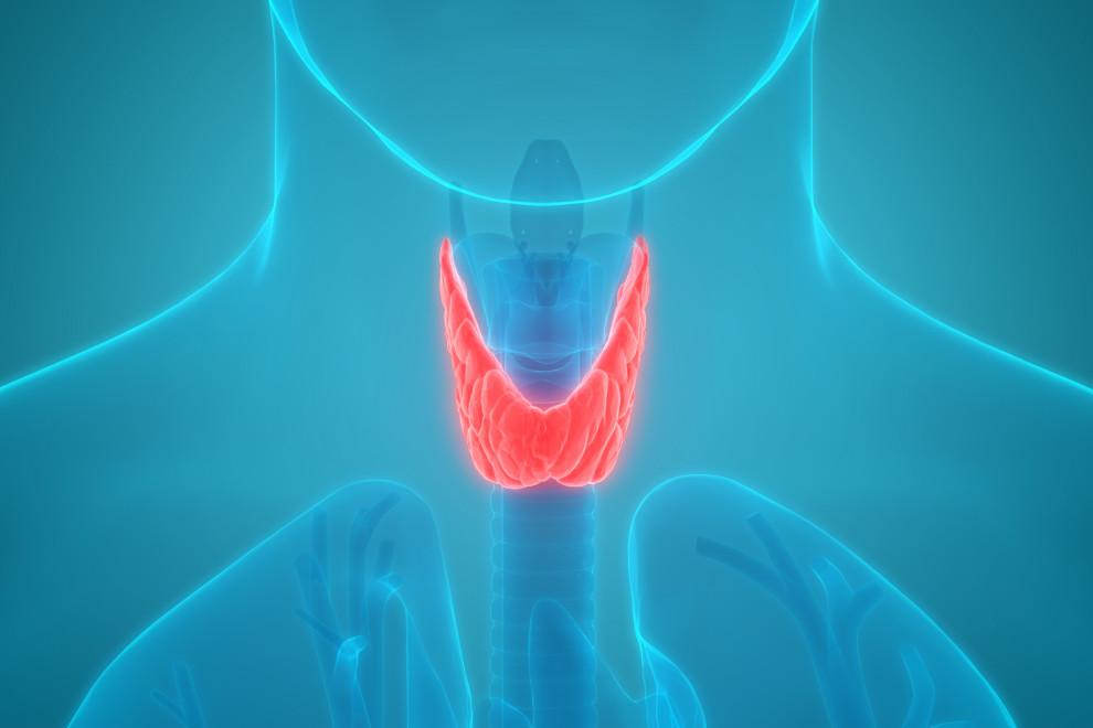 Enfermedades tiroides