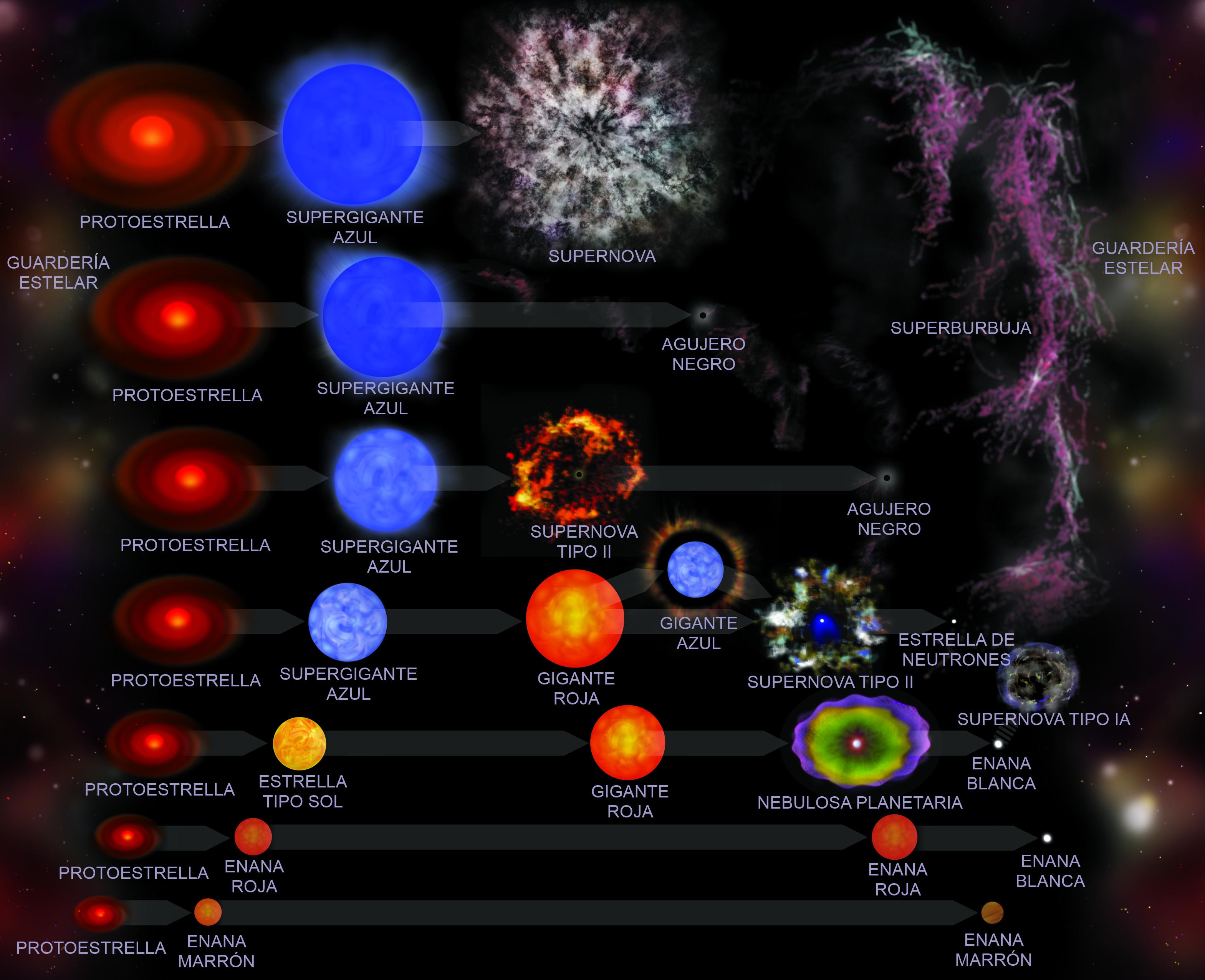 Etapas ciclo estelar