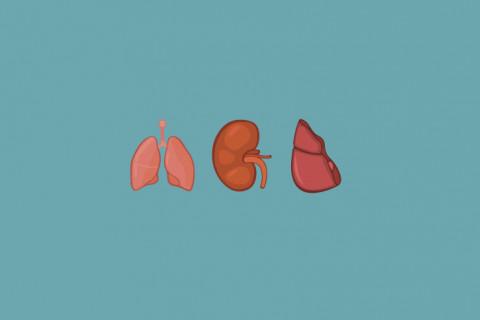 Trasplantes de órganos más complicados