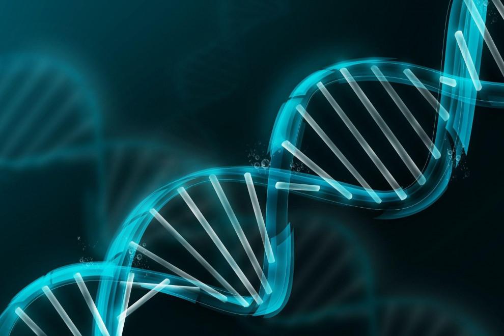 Tipos genes