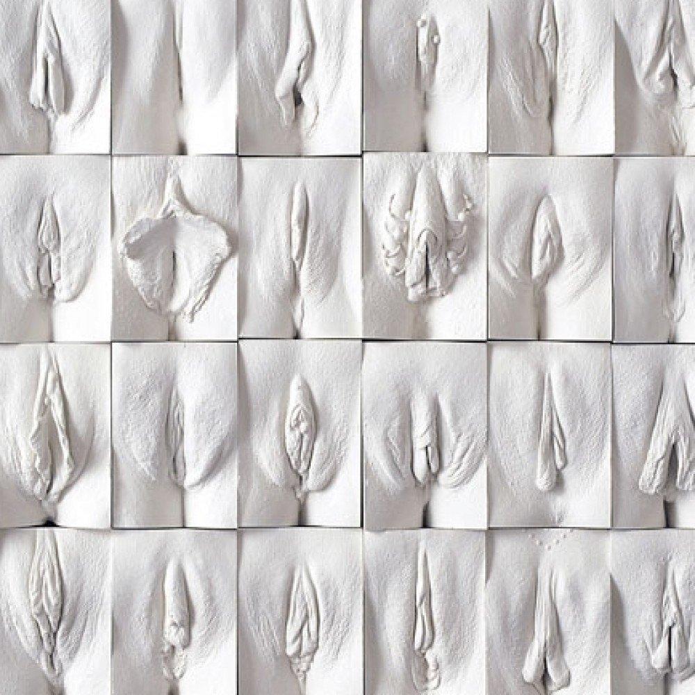 Clasificación vaginas