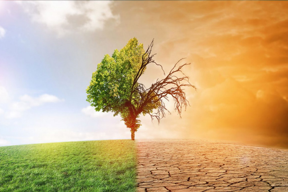 Causas cambio climático