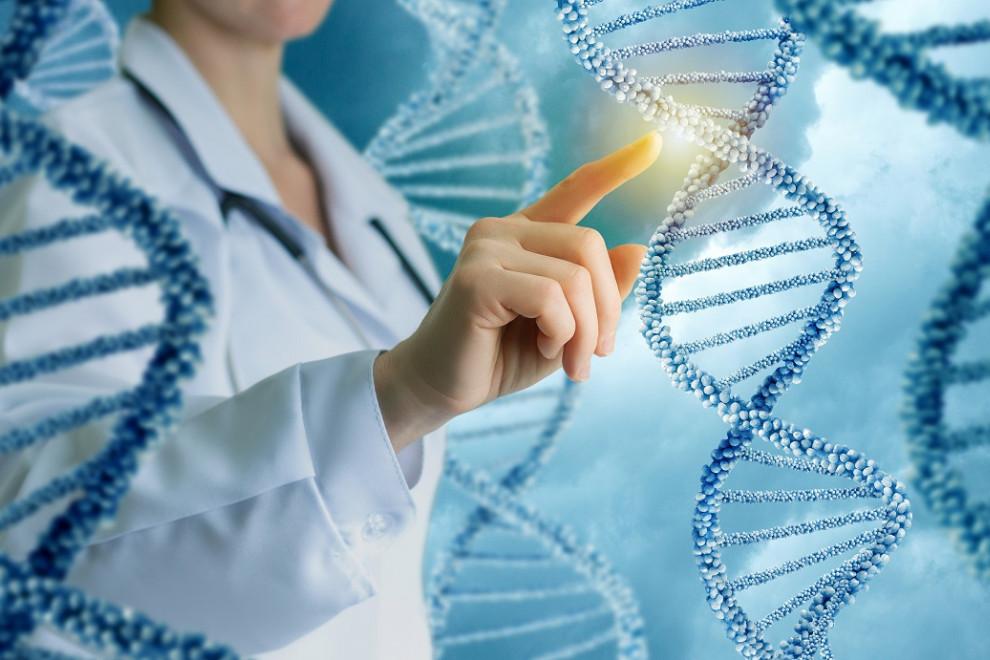 Libros genética