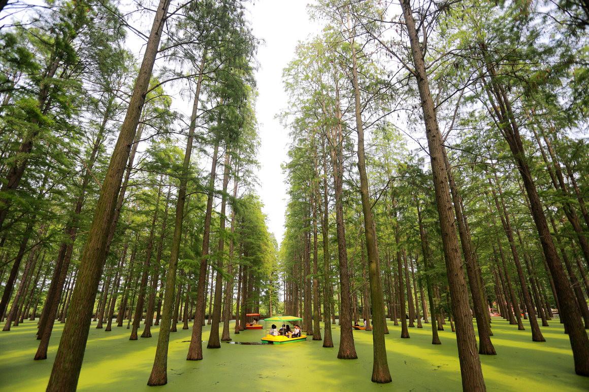 Bosque artificial