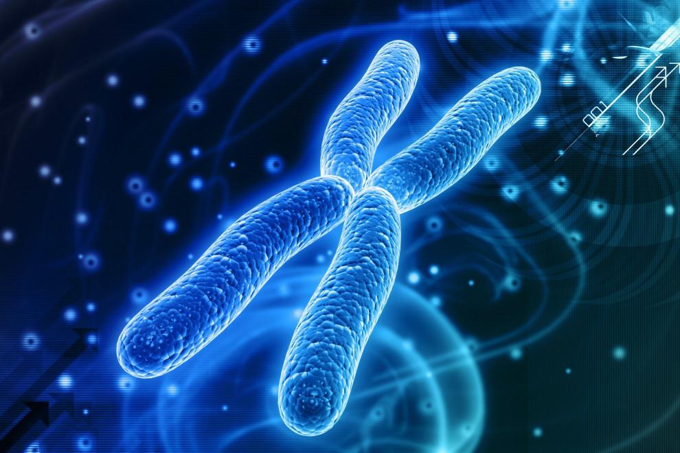 Tipos anomalías cromosómicas