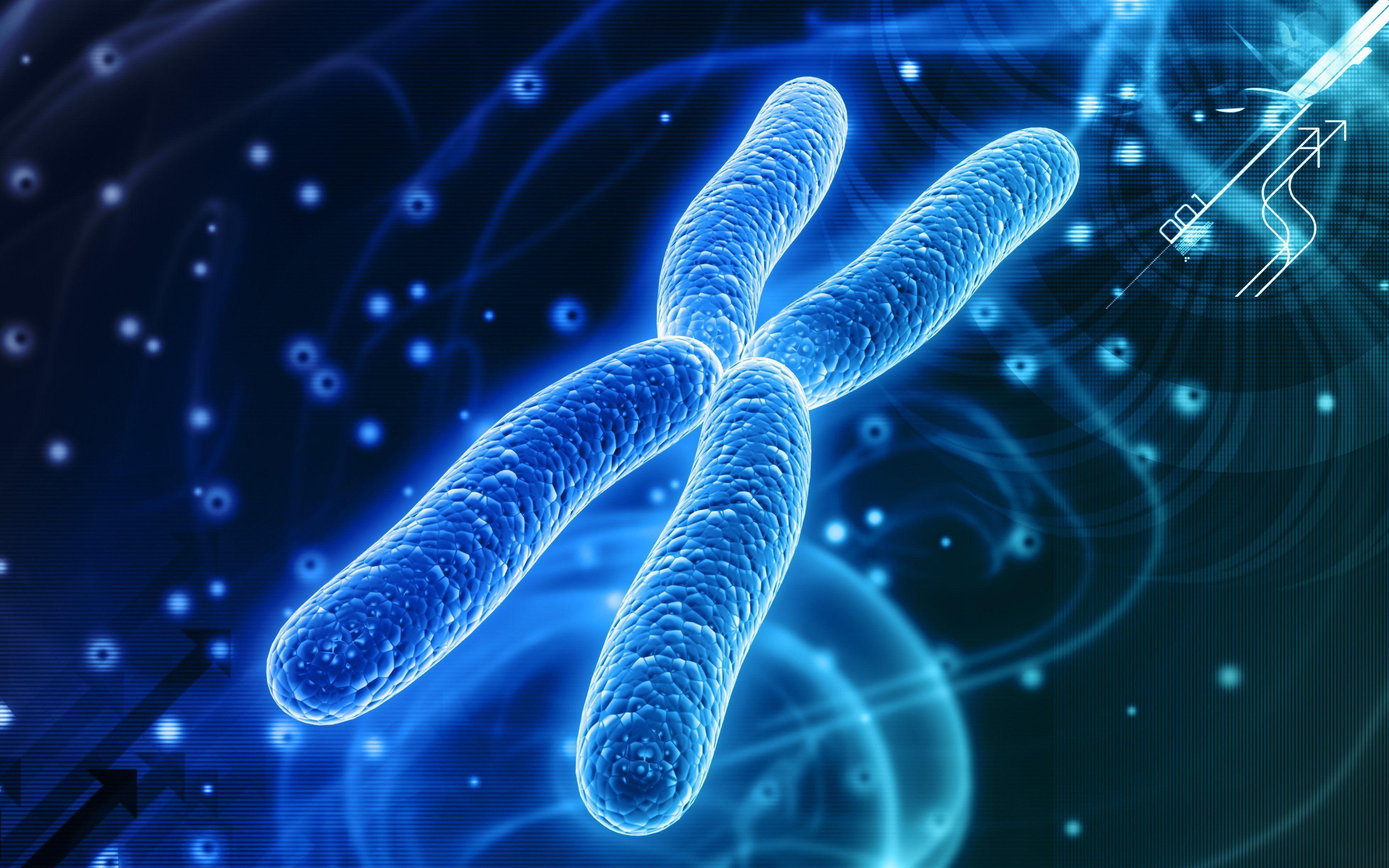 Qué son cromosomas