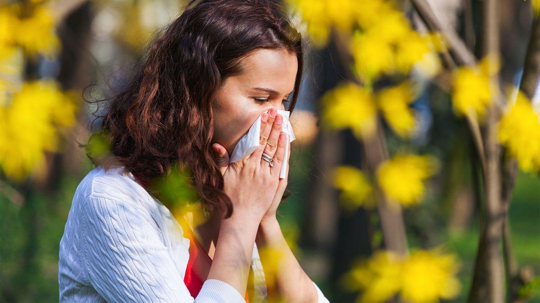 Alergia qué es