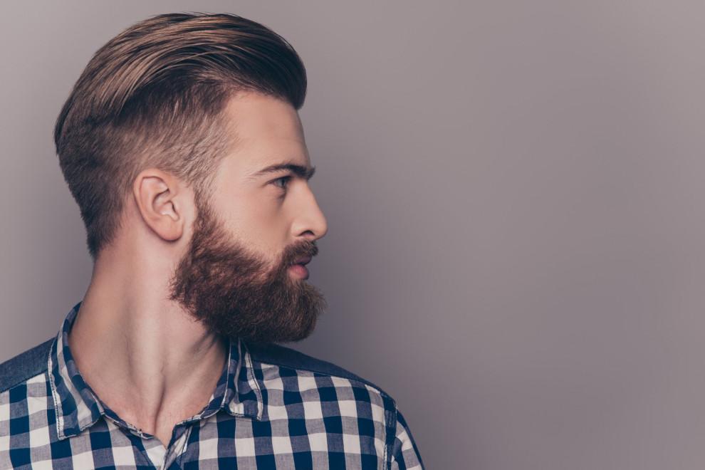 Tipos barbas