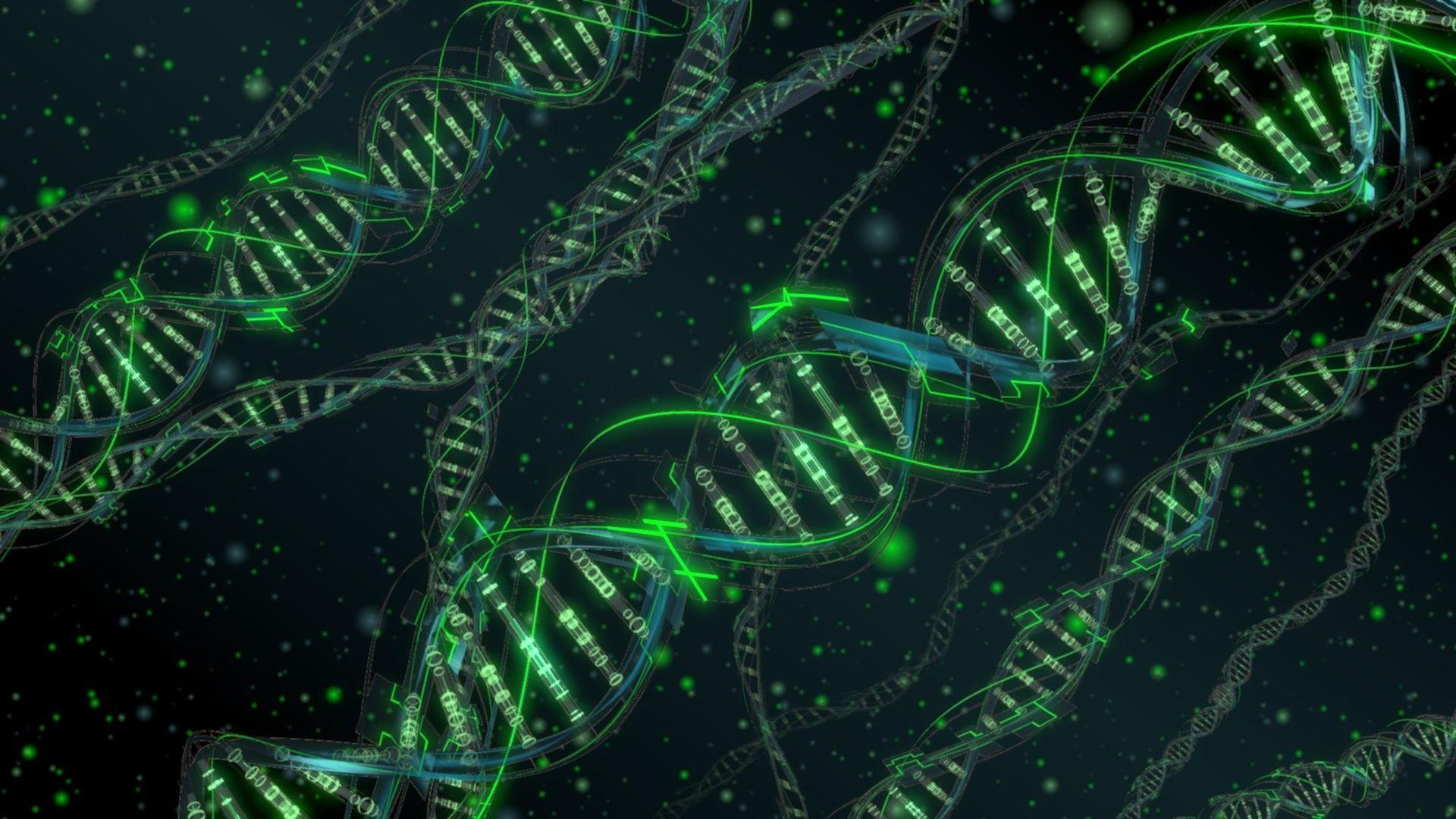 Genética molecular