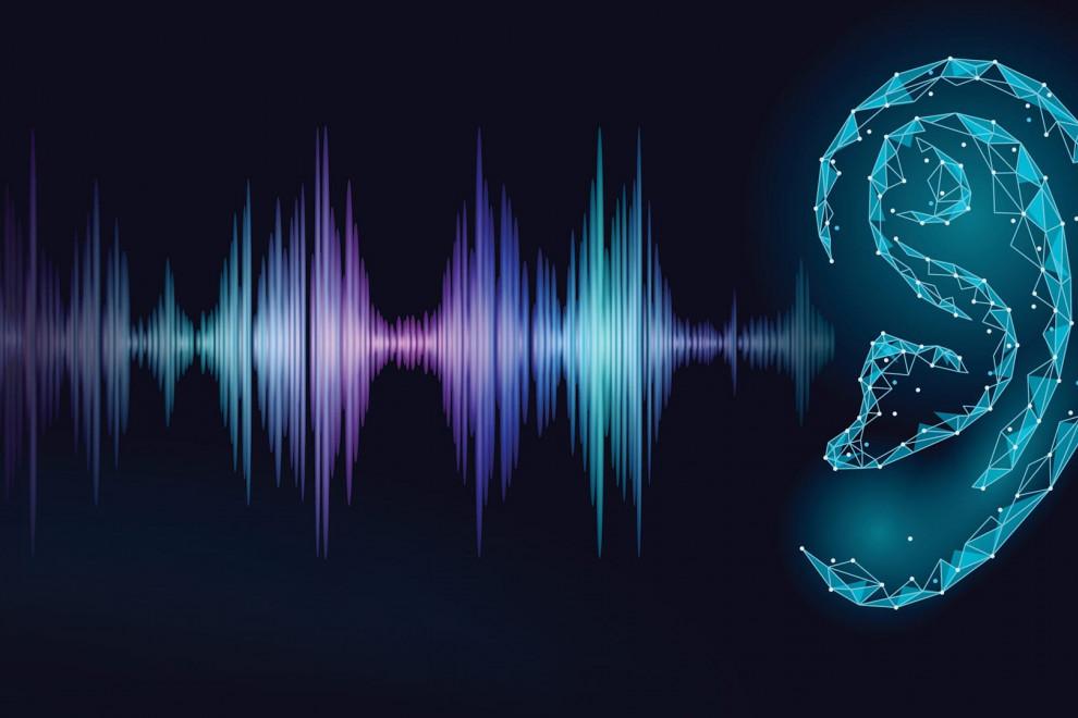 Tipos sordera