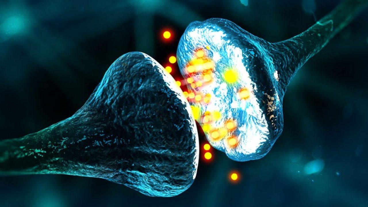 Neuropatía auditiva