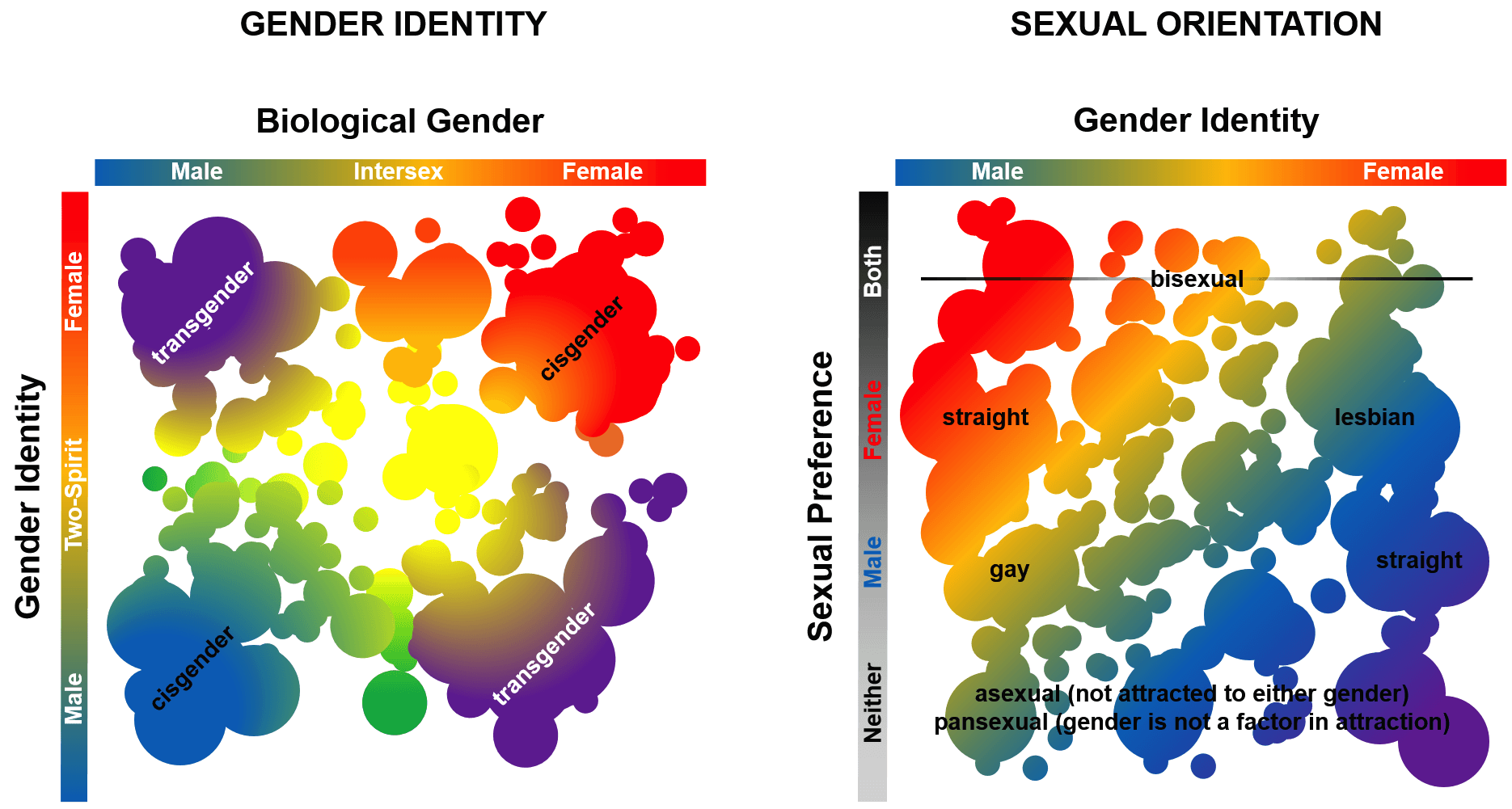 Género sexo