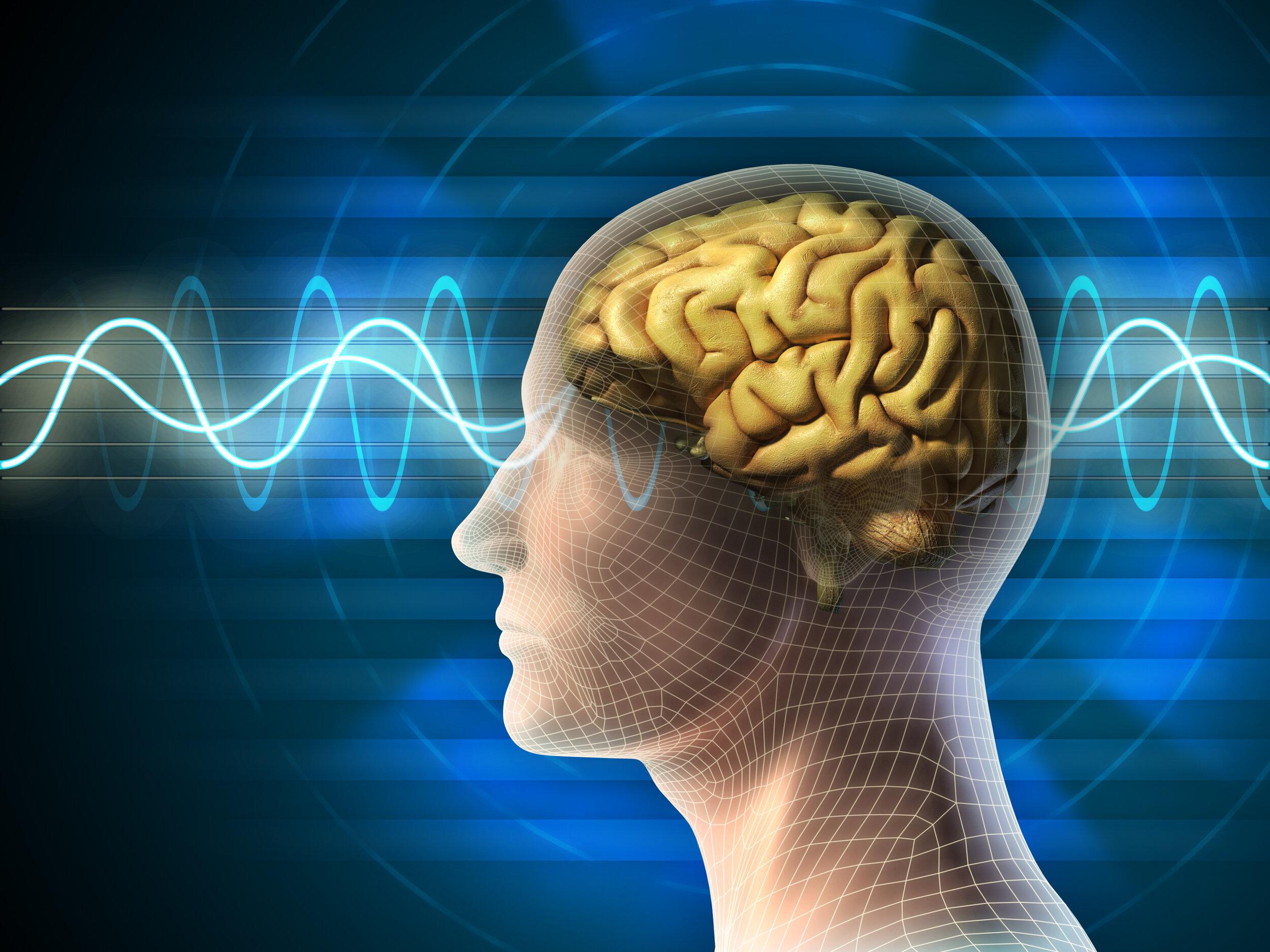 Cerebro mito