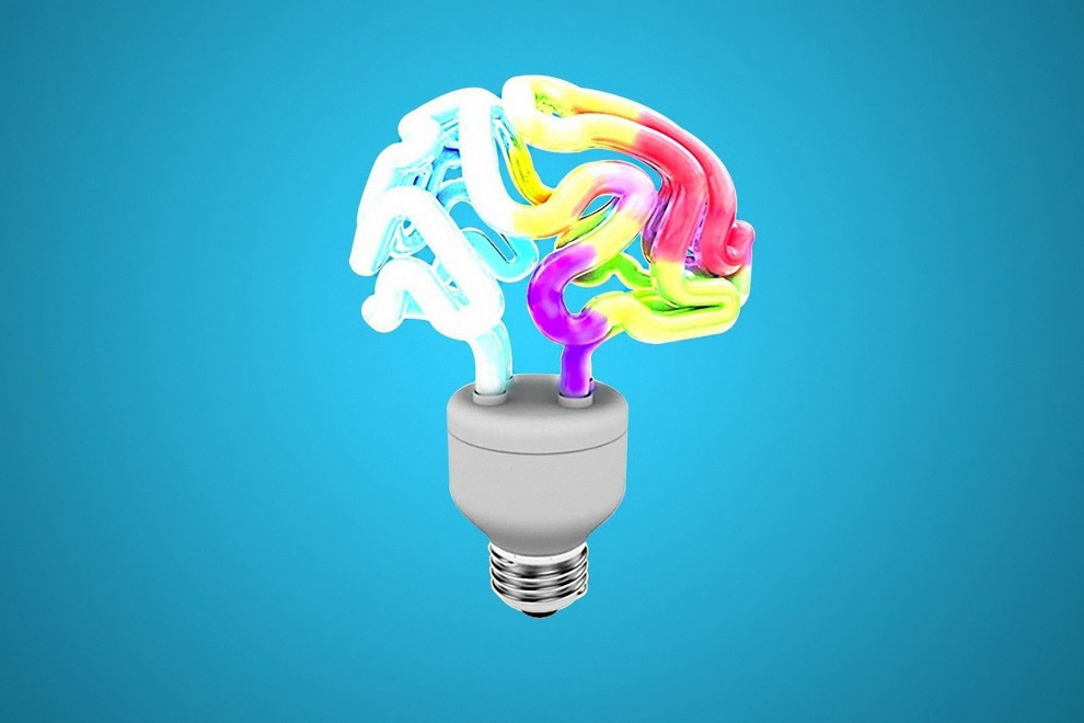 Diferencias memoria corto plazo memoria trabajo