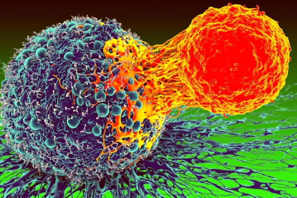 Mitos sobre el cáncer