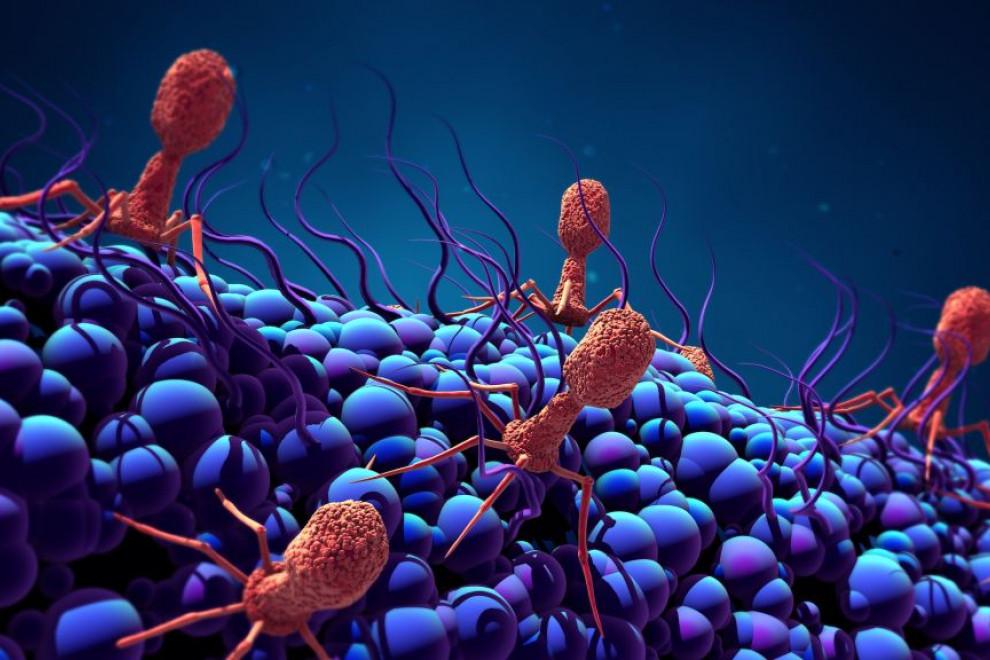 Diferencias bacteriemia y sepsia