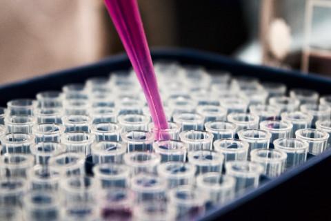 Niveles bioseguridad en un laboratorio