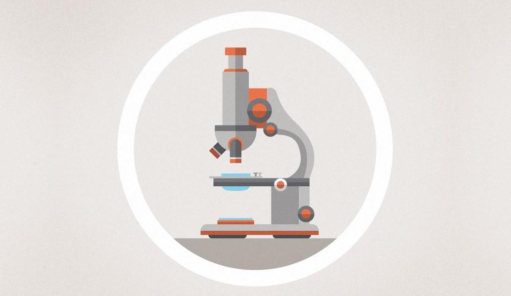 Los 18 Tipos De Microscopio Y Sus Características