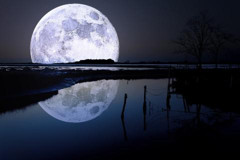 Cara luna